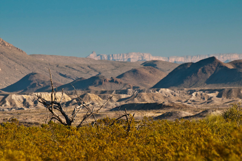 Desert Scrub and Sierra del Carmens