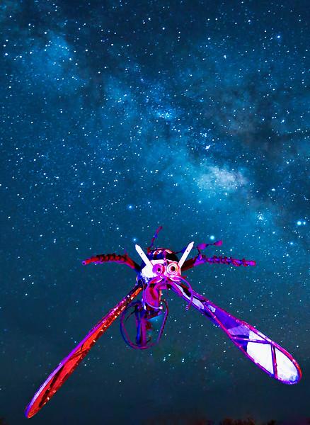 Alien invasion in Teringua
