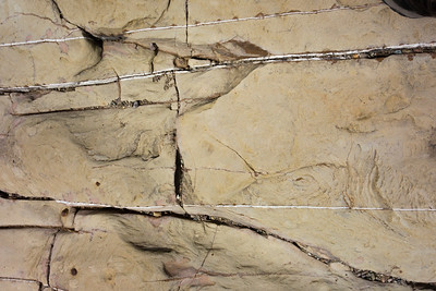 Unusual parallel striations of calcite in sedimentary rock