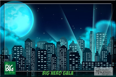 Big Brother Big Sister Big Hero Gala 2017