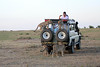 Cheetah_Family_Vehicle_Mara_Kenya_Asilia_20150006
