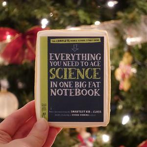 Big-Fat-Notebooks-cookie-1x1