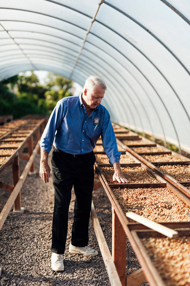 Farm owner Lee Paterson inspects drying coffee beans