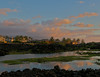Our neighborhood at Waikoloa Beach Resort (Photo credit: Jerry Leggett, ©2010, All rights reserved)