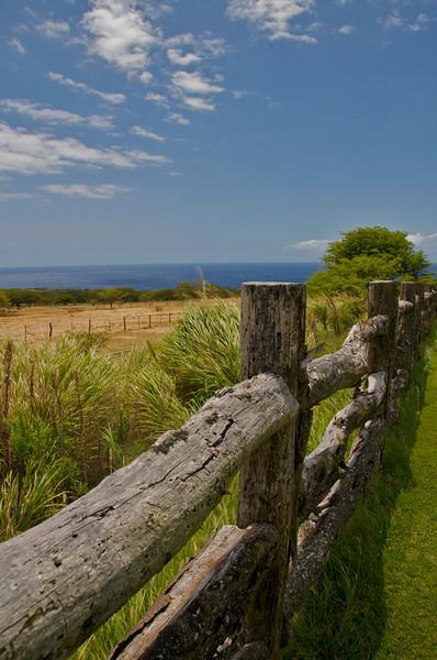 North Kohala Coast ranchland (Photo credit: Jerry Leggett, ©2010, All rights reserved)