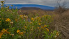A View of Mauna Loa (Photo credit: Jerry Leggett, ©2010, All rights reserved)