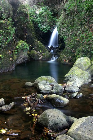 Hidden Waterfall near Waipio Valley