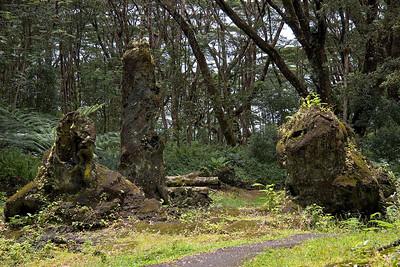 Lava State Tree Park