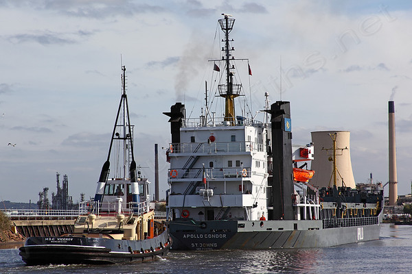 Apollo Condor and MSC Viceroy on the Ship Canal