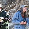 Christmas bird count at the Big Morongo Canyon Preserve