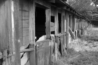 Rolling Fork, Mississippi big red barn Some photos just scream for Black and White! These Mississippi Delta photos are no exception. Great southern buildings and architecture from our past and present.