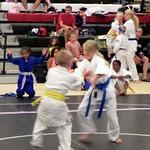 Taekwondo_and_Judo