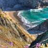norcal-beach_2573