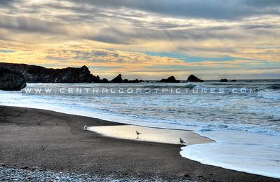 big-sur-beach_3721
