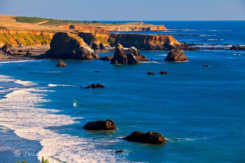 20110801_CA Central Coast_1366