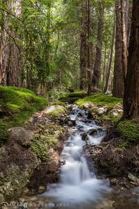 Burbling Brook, Big Sur, California