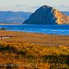 20110801_Moro Bay_1381