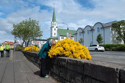 Reykjavik Frikirkjan Church