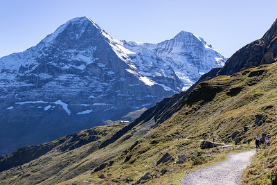 On Walk to Kleine Scheidegg