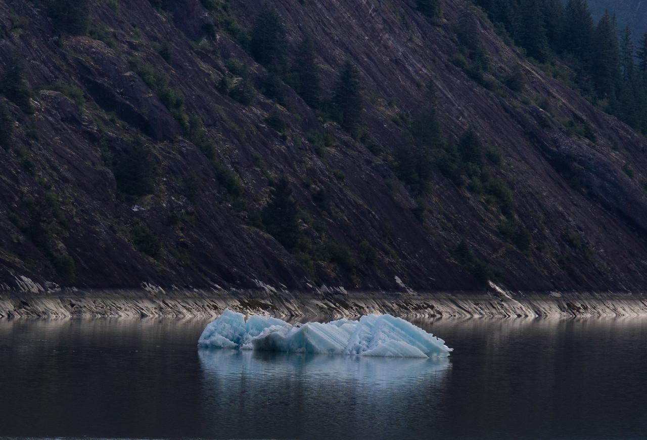Iceberg in Endicott Arm