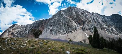 Jacqueline Peak in Big Basin with Lupine
