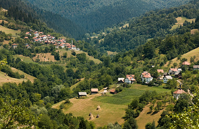 Bucolic View