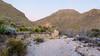 Morning view up Heath Creek