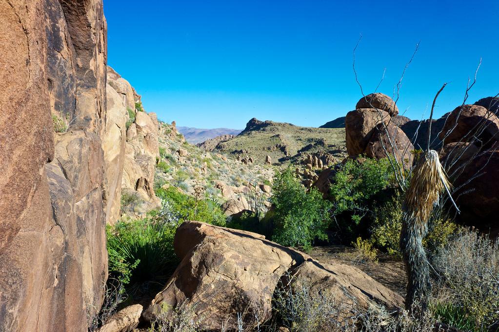 Desert Witch Doctor<br /> Grapevine Hills<br /> Big Bend National Park <br /> October 2010