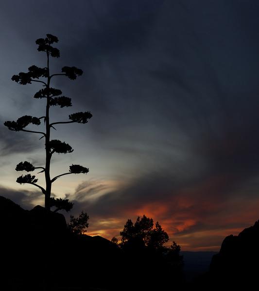 Sunset<br /> Chisos Basin<br /> Big Bend National Park <br /> Texas<br /> 2011