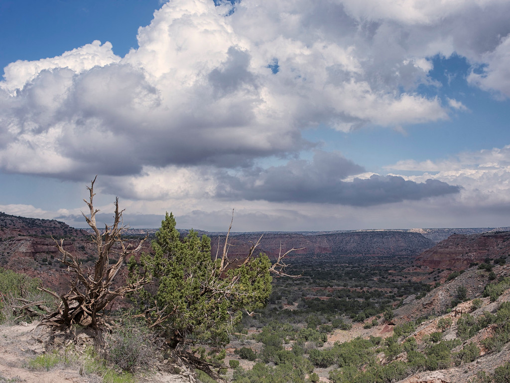Valley overlook between the Lighthouse and Castle Peak<br /> <br /> Palo Duro Canyon<br /> Texas <br /> April 2012