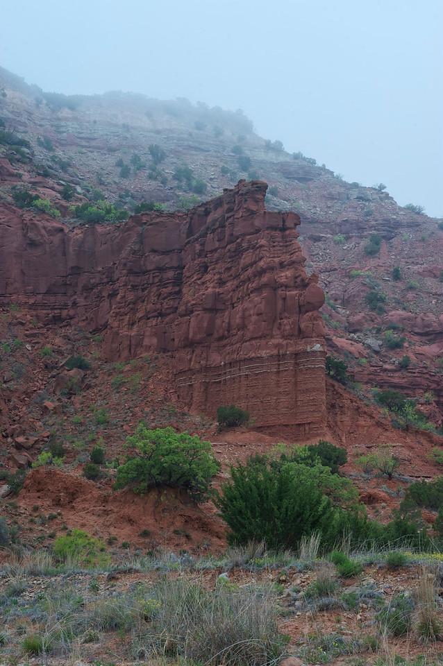 Caprock Canyon<br /> Texas <br /> April 2012