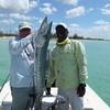 John Herman with a big West Andros Barracuda!  Photo: Chick Minehart