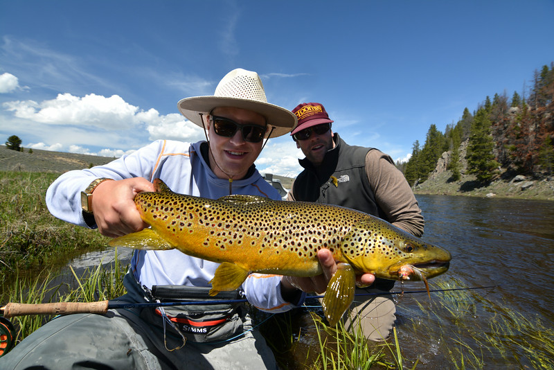 "Dan Soltau and John Bond with a nice brown caught on Dan's ""smoke & mirrors"" streamer.  Photo: James Anderson"