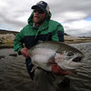 George Isham - 20 pounder - on a prince nymph!