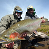 Gordon Cox and Julien with a big Aquarium bow