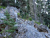 Can you spot a pika in this picture?<br /> <br /> Wytez wzrok i znajdz pike na tym zdjeciu!
