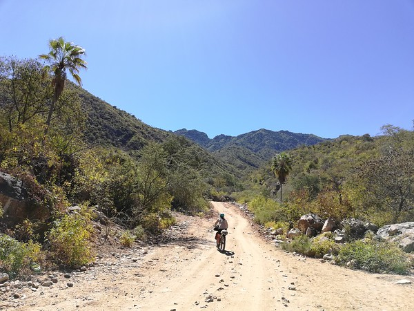 Up into the Sierra de la Laguna