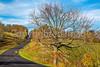 TransAm & Bike Route 76 riders on Blue Ridge Parkway, VA - C3- - 72 ppi