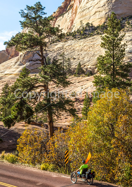 Zion National Park - C2-0074 - 72 ppi-2
