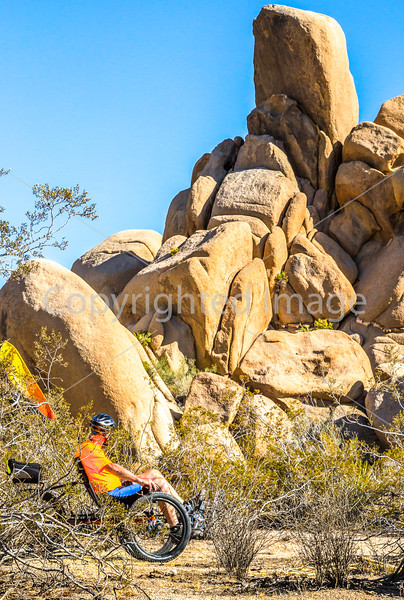 Joshua Tree National Park - 2016 -D1- C3-0055 - 72 ppi
