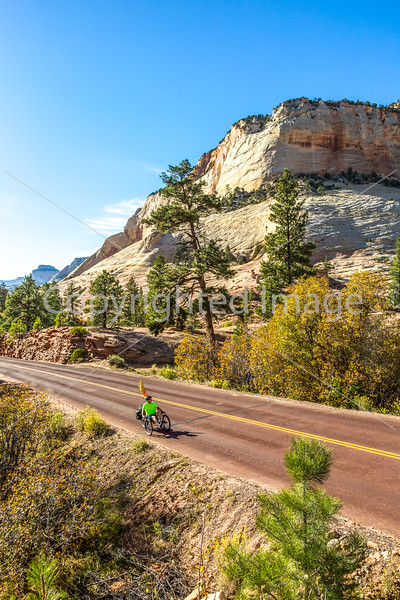 Zion National Park - C2-0086 - 72 ppi