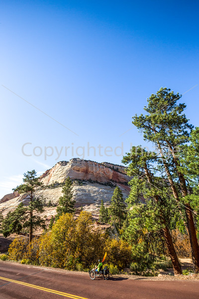 Zion National Park - C3-30294 - 72 ppi