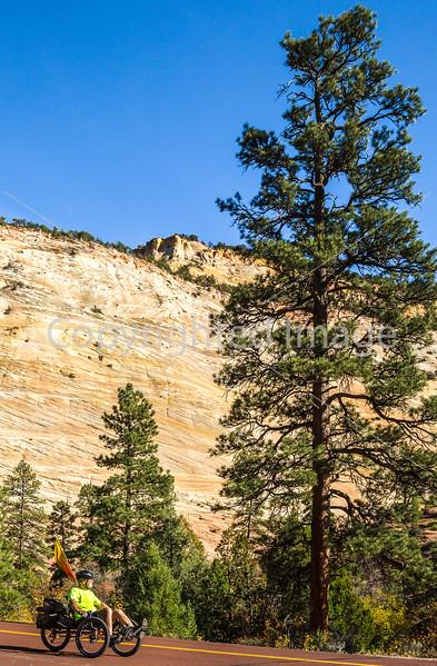 Zion National Park - C2-0058 - 72 ppi-2