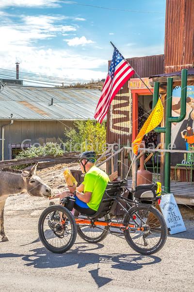 Route 66 in Oatman, AZ - C3-0109 - 72 ppi