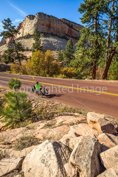 Zion National Park - C3-30328 - 72 ppi