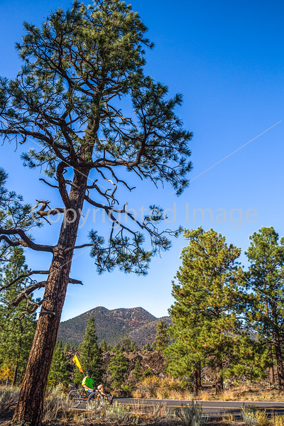 Sunset Crater Volcano National Monument - C3-0060 - 72 ppi