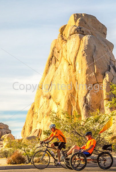 Joshua Tree National Park - 2016 -D1-C3-0328 - 72 ppi-2