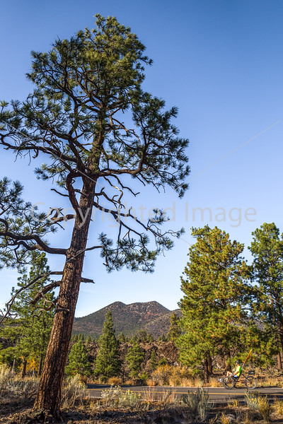Sunset Crater Volcano National Monument - C3-0066 - 72 ppi
