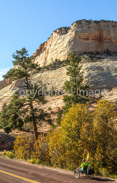 Zion National Park - C2-0073 - 72 ppi-3