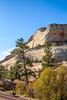 Zion National Park - C2-0081 - 72 ppi